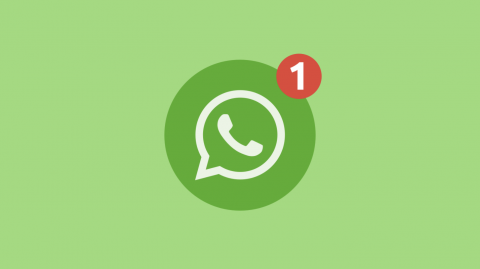 Как установить бета-версию WhatsApp на компьютер